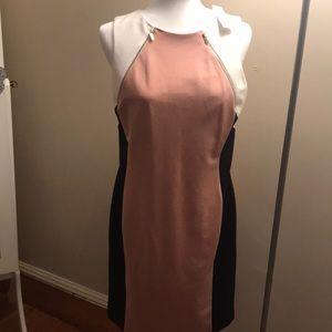 Beautiful Ann Taylor business dress